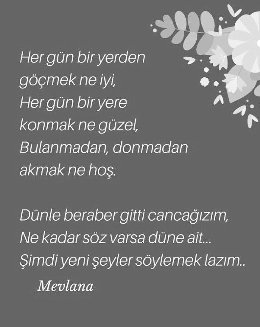 W36-Mevlana